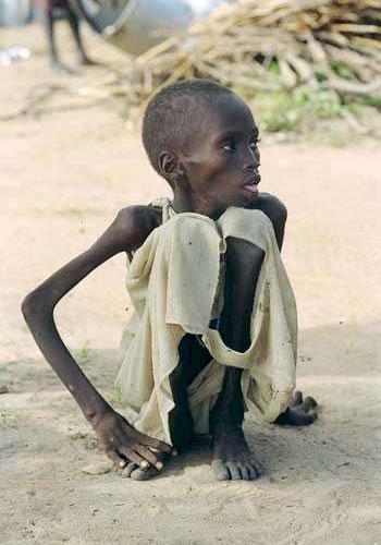 starvingboy